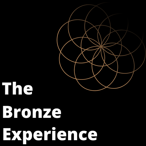The Bronze Experience