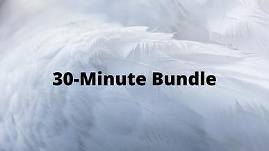 Spiritual Guidance Bundle (30-Minute)