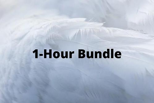 Spiritual Guidance Bundle (1-Hour)