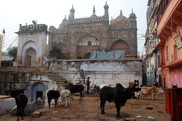 20  Gyanvapi Mosque - Varanasi, Uttar Pradesh   © Louis Divine 2017