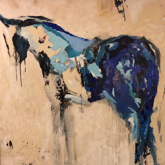 Chuck the Paint Pony, 2019