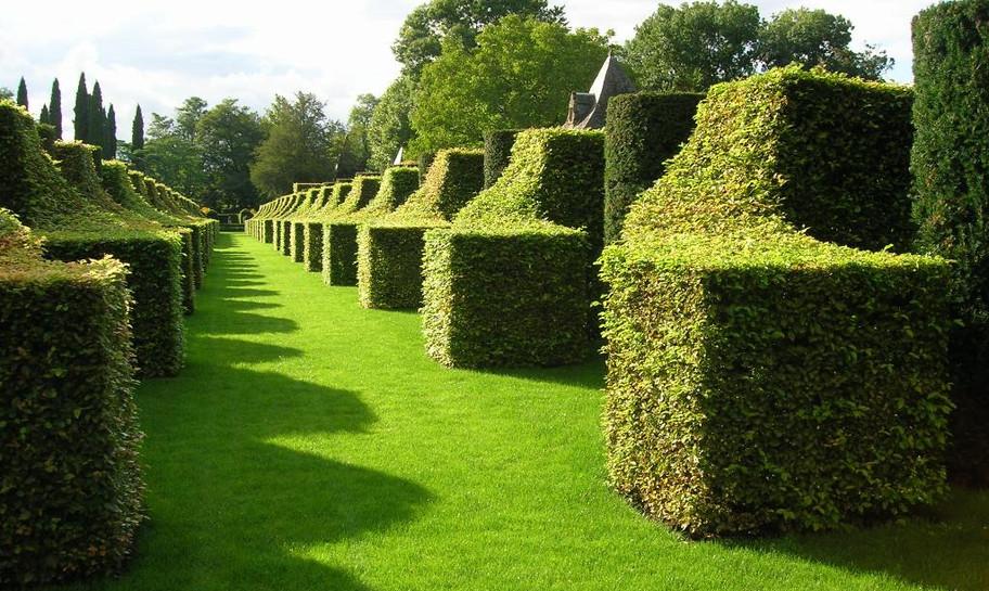 Eyrignac_Manor_-_Gardens-02.jpg