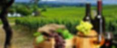 cropped-wine-banner-port1.jpg