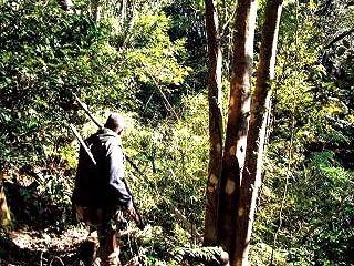 Hunter Trail 〜猟師と山とケモノ道〜