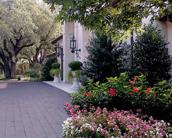 Landscape Design for Front Entry