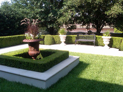 Decorative Boxwood Hedges