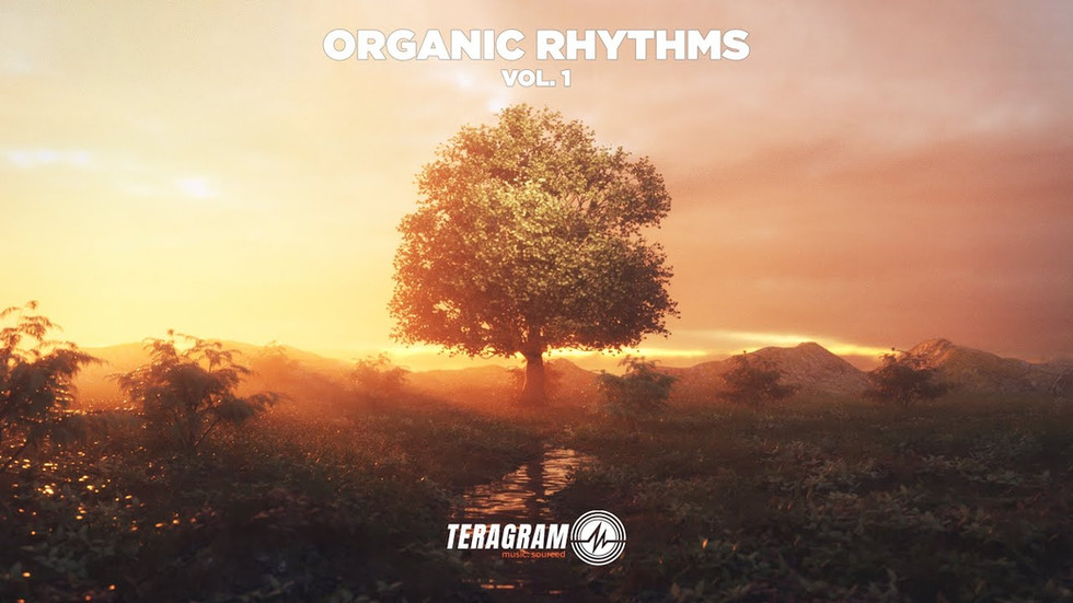 Organic Rythms Vol.1