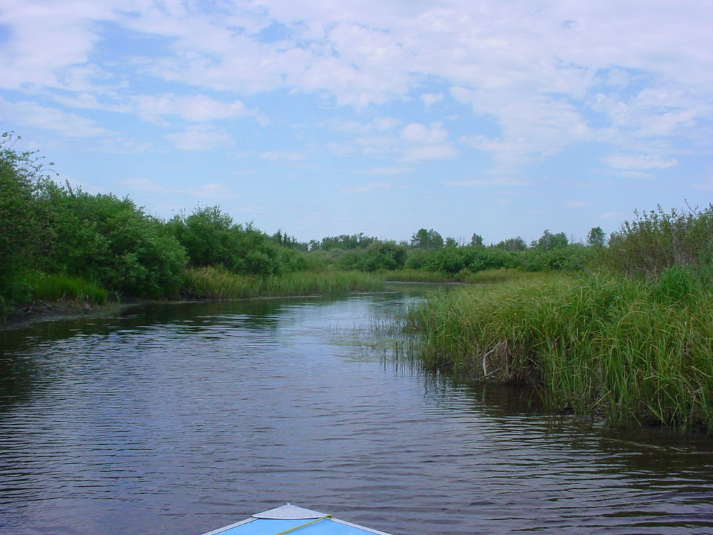 marsh Village