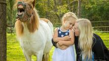 Infoks ponidega pildistamisel