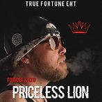 PRICELESS LION IMAGE.jpg