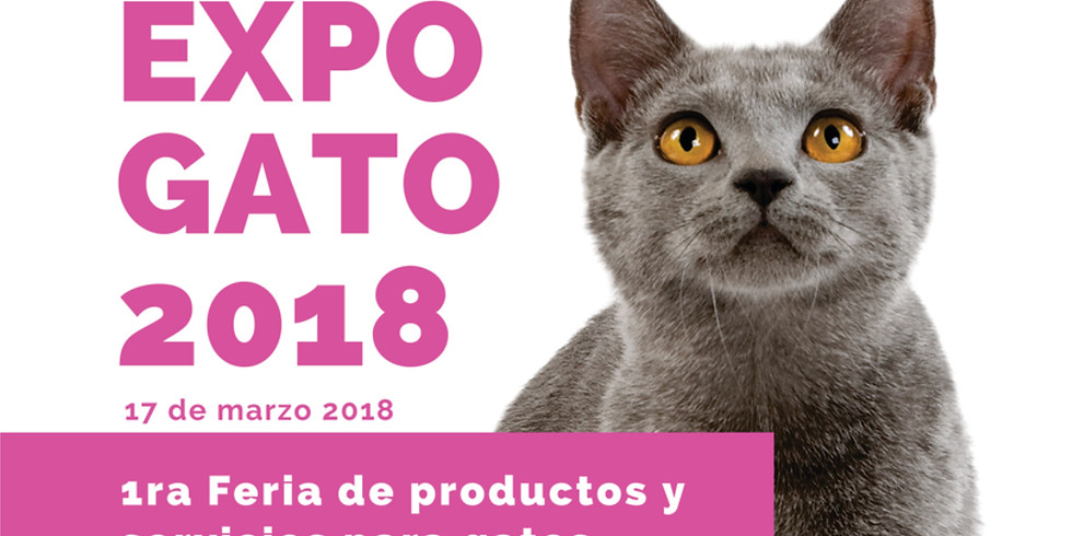 Expo Gato 2018