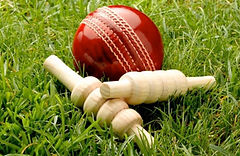 cricket temp for phil.jpg