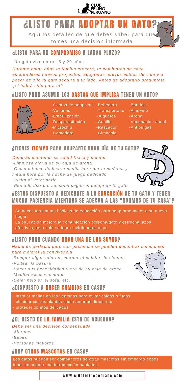 ¿Listo_para_adoptar_una_mascota__(1).png