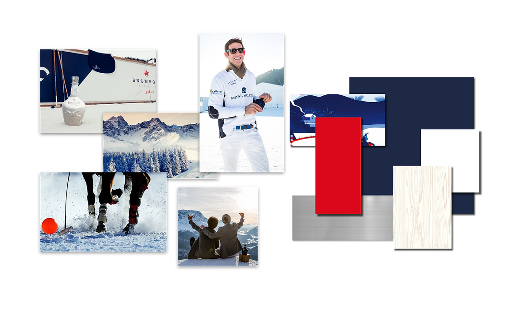 snow polo mood board.png
