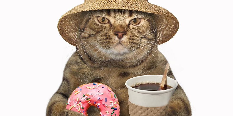 Hills Cat Cafe