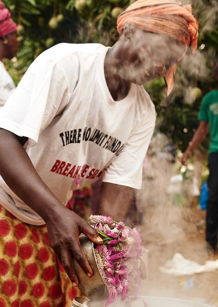 N'Mambe adding droike (local flowers) to dye bath