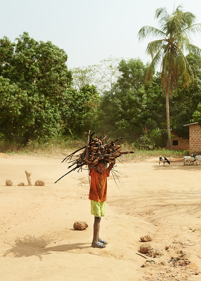 Small boy collecting firewood, Modiya