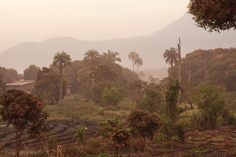 Modiya in the Kindia region of Guinea