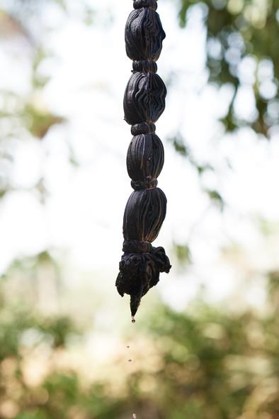 Sunflower seeds and logwood on silk adire albare