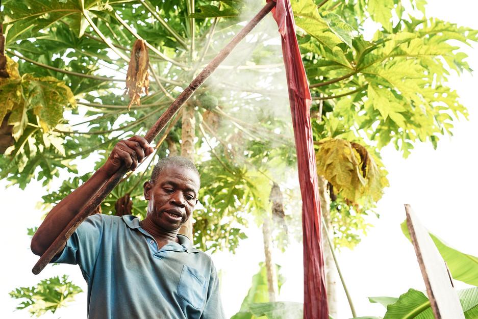 Josef Removing  Wax From Madder Root Batik