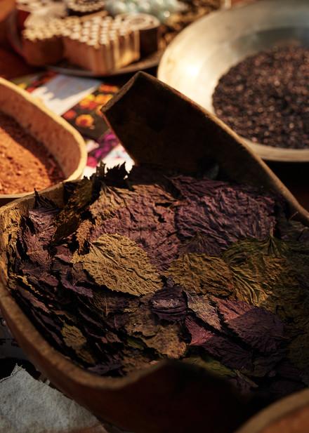 Purple basil, natural dye workshop