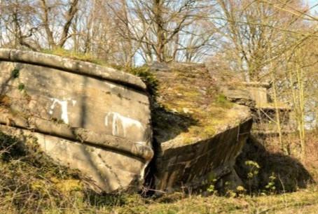 De Schans van Smoutakker: van dodelijke ruïne naar uniek natuurreservaat!
