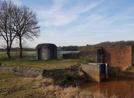 Van tankval tot natuurparadijs: de anti-tankgracht rond Antwerpen