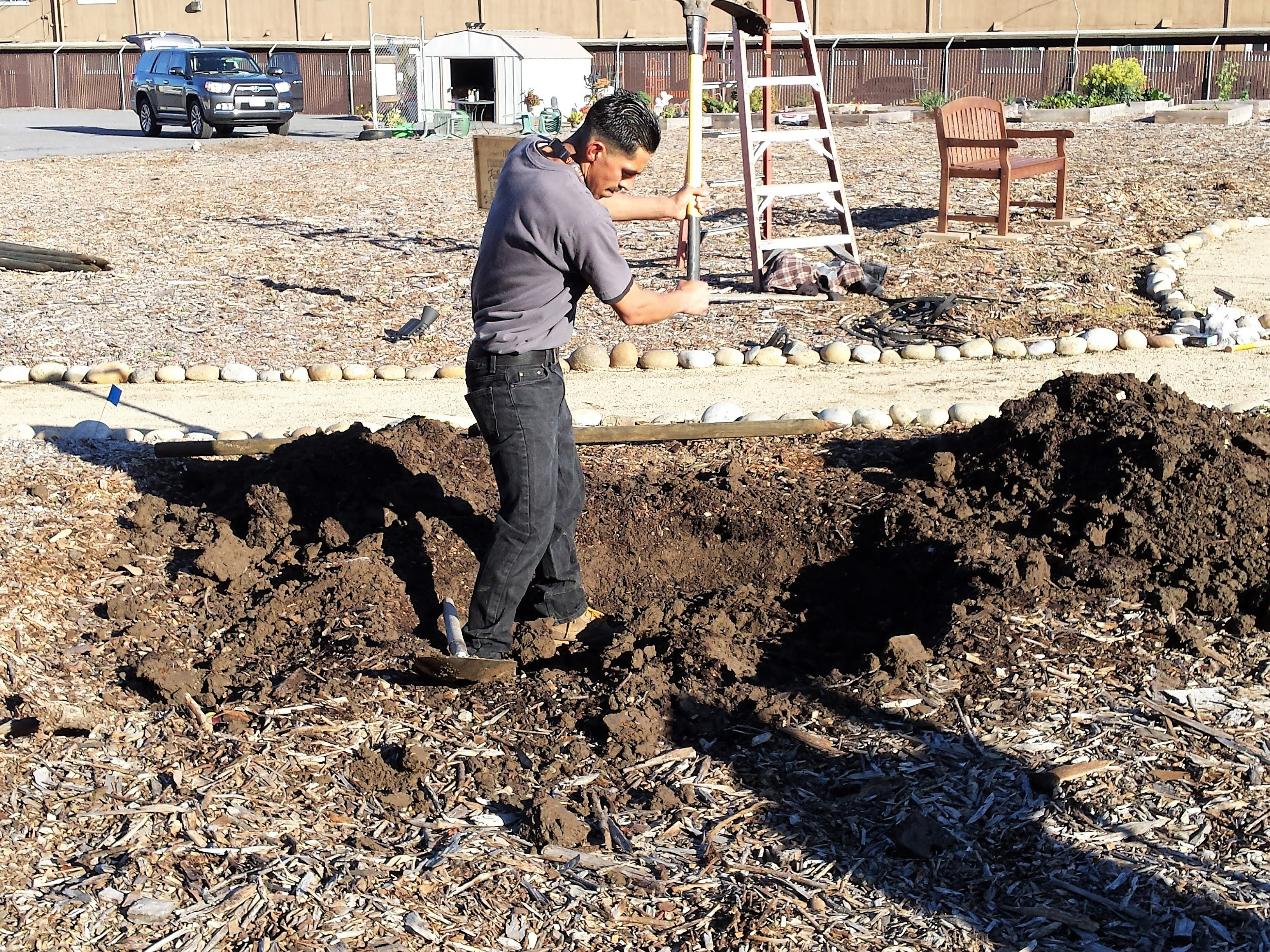 3.13.19 tree planting (6)