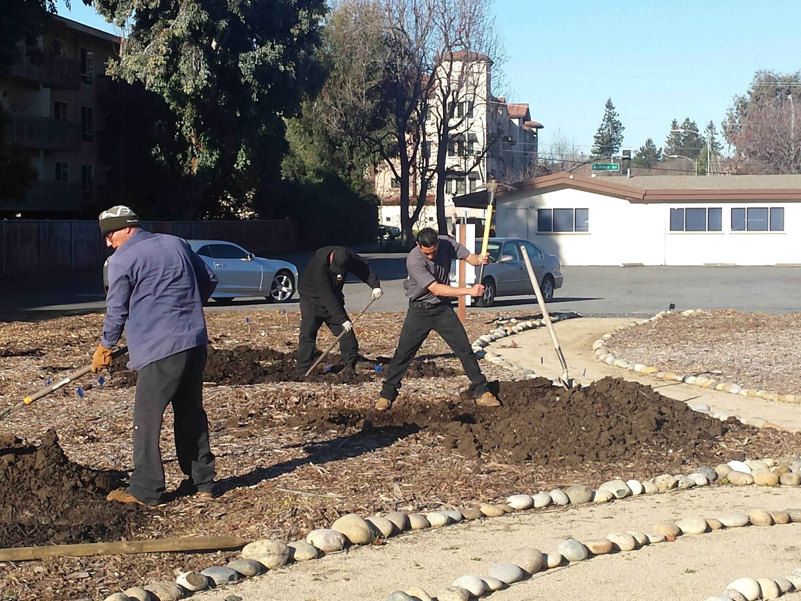 3.13.19 tree planting (4)
