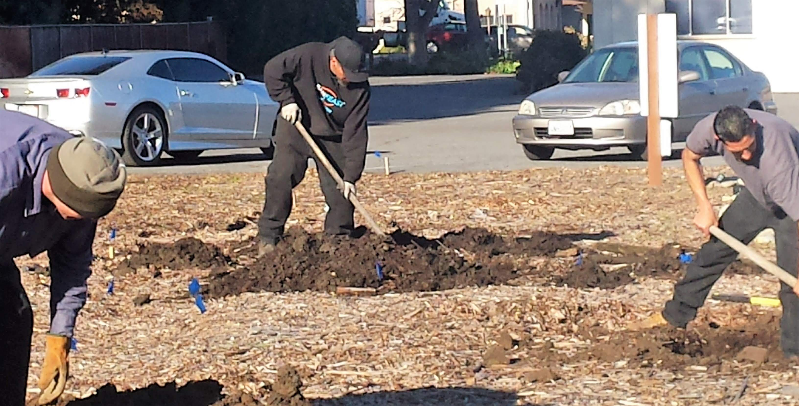 3.13.19 tree planting (1)