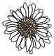 Daisy_white (1).png