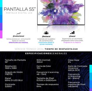 """Pantalla LCD 55"""" Profesional"""