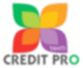 Logo new png Credit Pro.png