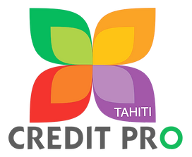 Logo new png Credit Pro.png