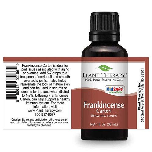 Frankincense Carteri