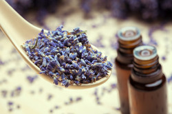 Learn how to create your own Aromatherapy Blends