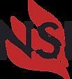 nino securite incendie, extincteur toulouse, extincteur, nsi