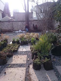 jardinmediterraneo5