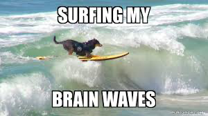Beta, Theta, Alpha, what now? Exactly what waves does our brain surf?