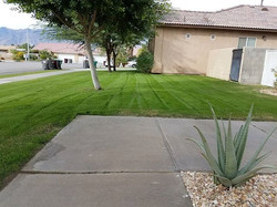 these two winter lawns got their first cut of the season #elitelandscaping #elitelawn #landscaping #