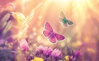 dreamstime_l_111570379.jpg