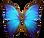 Wings%20of%20a%20butterfly%20Morpho.%20M