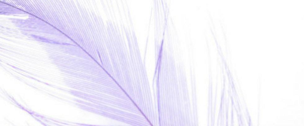 Untitled design (2).jpg