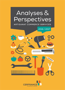analyse perspectives 2017