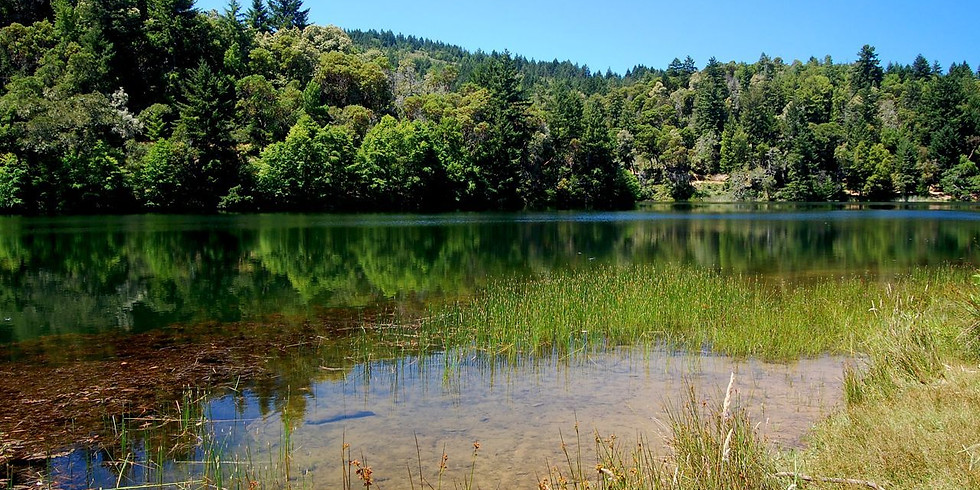 Two Lakes Trail - Fairfax Hike + Raquel's Food