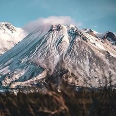 Tasty Mt. Texture