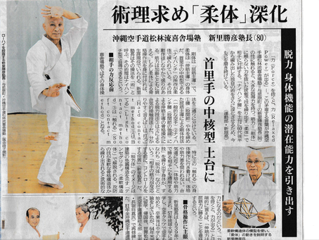 """Forceless Force is Forceful"", An interview with Shinzato Katsuhiko Sensei, May 2019"