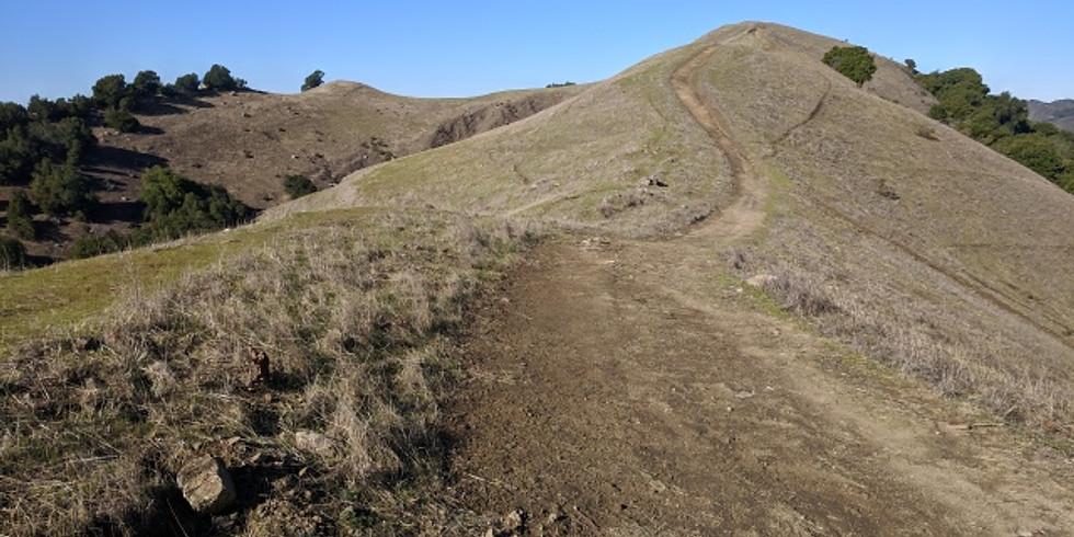 Rock Ridge View and Elderberry Trail Hike + Raquel's Brunch