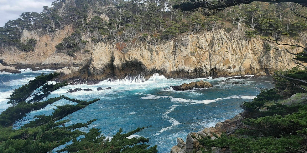 Point Lobos hike + Raquel's Food