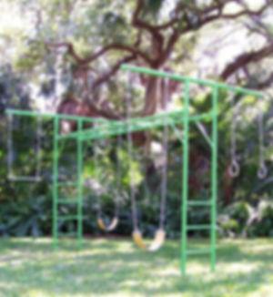 AmericaGym Swing Set